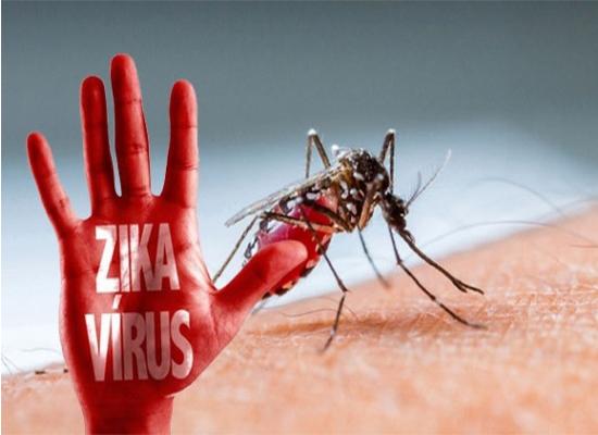 diệt muỗi tại bình dương