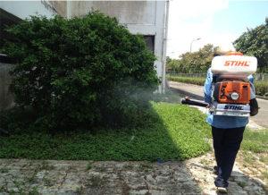 diệt muỗi tại bình tân