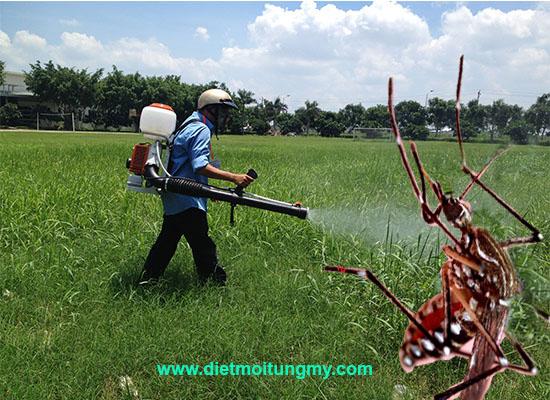 diệt muỗi tại gò vấp