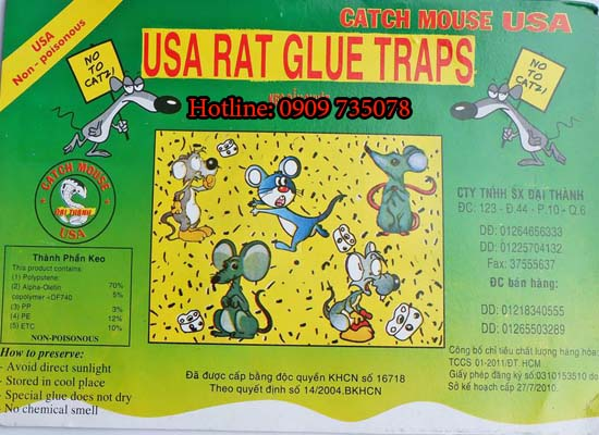 diệt chuột tại bình dương